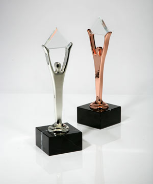 Silver and Bronze Stevie Awards